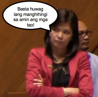 Lani Mercado sets her terms with regard to proposals to scrap the pork barrel.