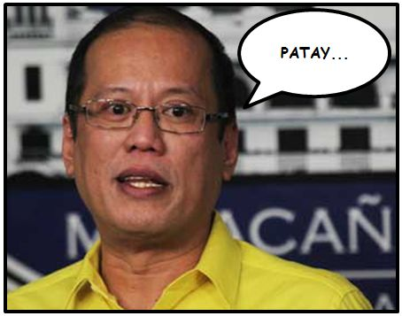 noynoy_aquino_dap_unconstitutional