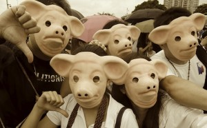 Demonstrators wear masks depicting pigs during a protest against official corruption at Luneta park in Metro Manila
