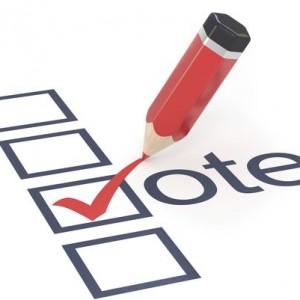 voter_education