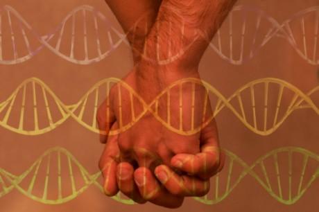 gay_genes_rect-620x412